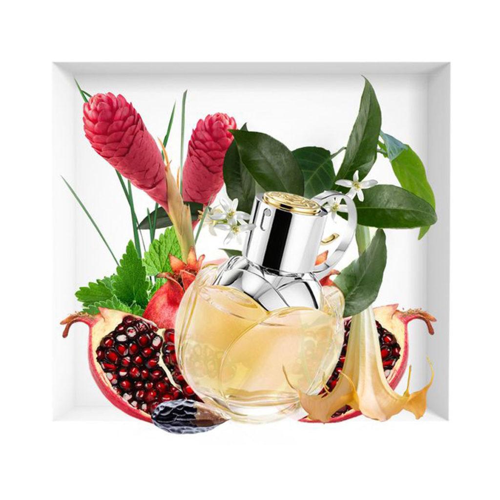 Fragrancefind | Summer Fragrances